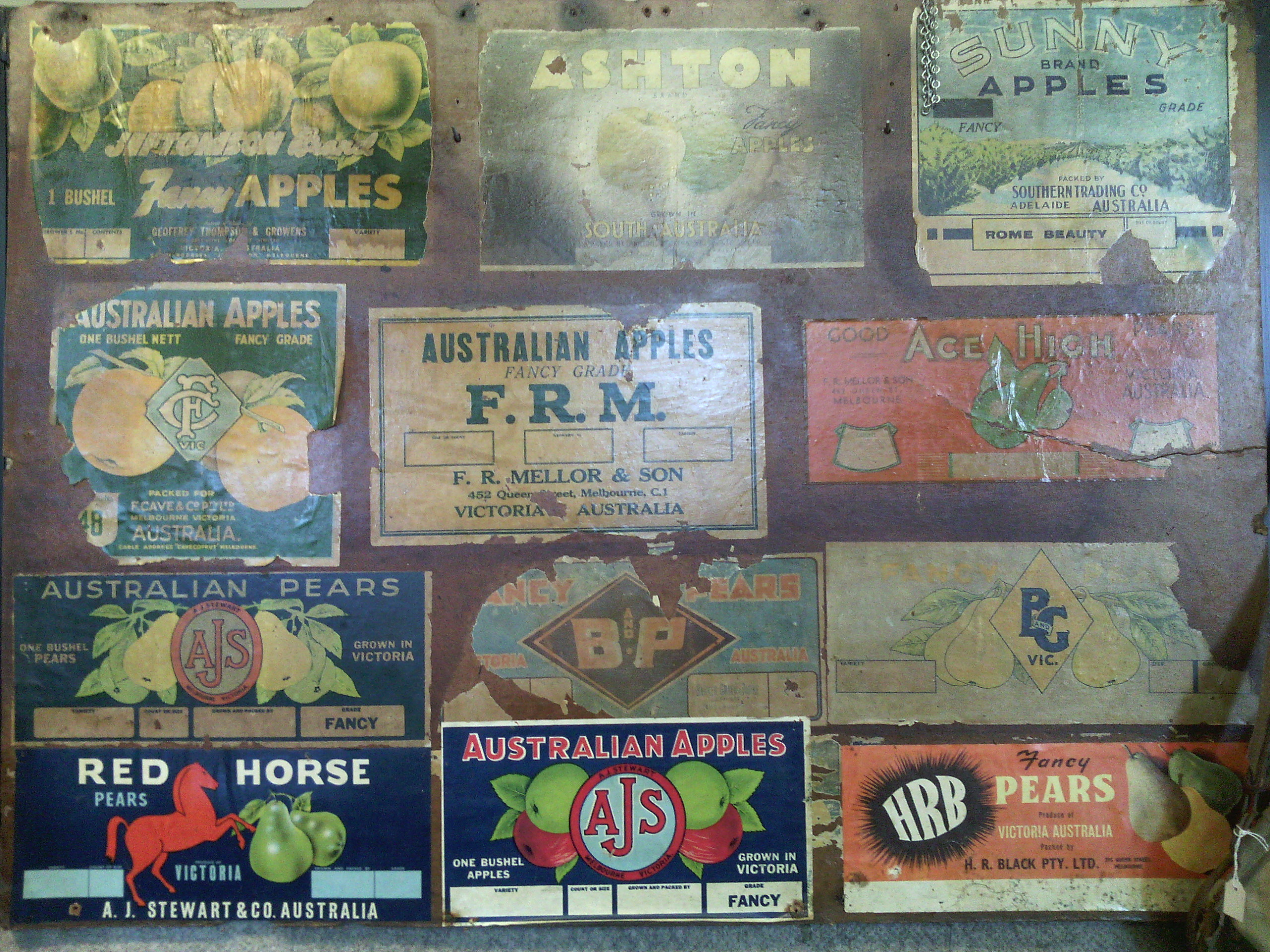 Harcourt Apple Brands